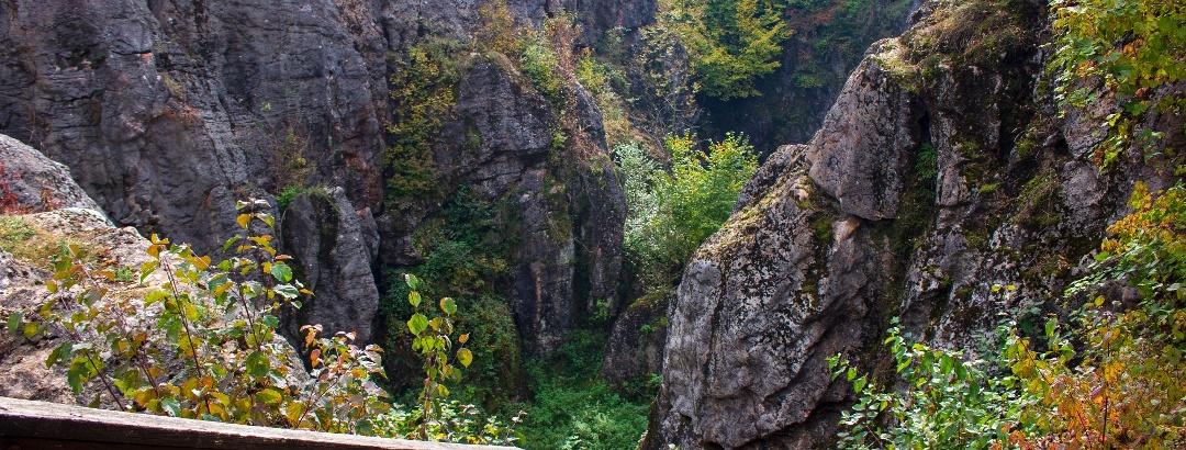 Úrkút, Csárda-hegyi őskarszt