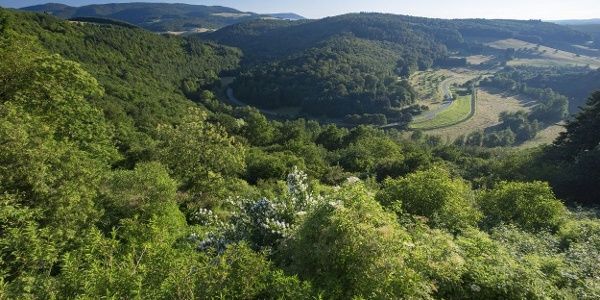 Blick vom Naturschutzgebiet Mittagsfels