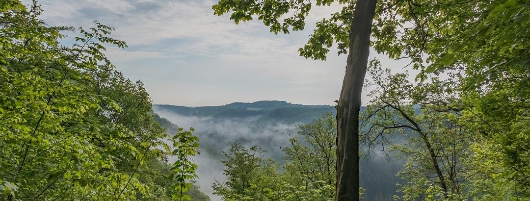 Panoramablick in Sayntal