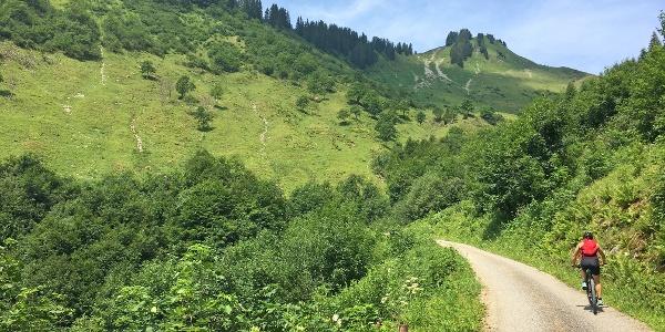 Am Gaßnerberg kurz vor der Gaßner Alpe