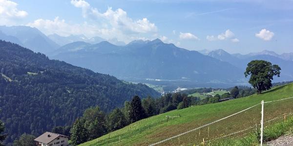 Über den Gaßnerberg hinauf zur Gaßner Alpe