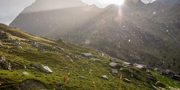 Piz Bernina Trail, Wanderer