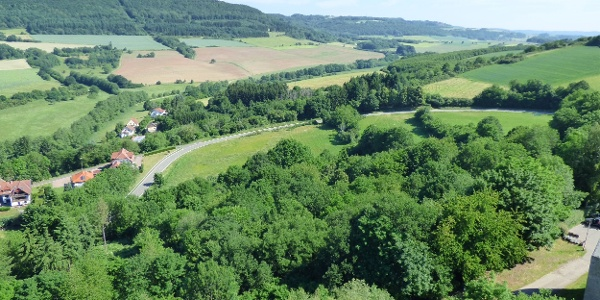 Blick von der Burg Lichtenberg