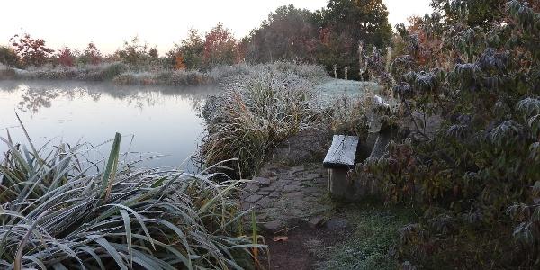 An den großen Seen im Forstpark