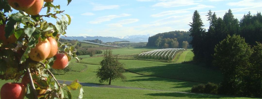 Aussicht am Schwäbischen Bodensee