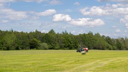 Wiesen und Felder
