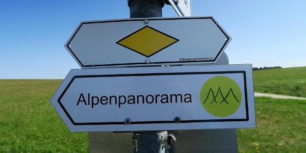 Auf geht's zum Alpenpanorama.