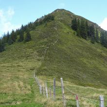 Abstiegsgelände vom Schwarzkogel