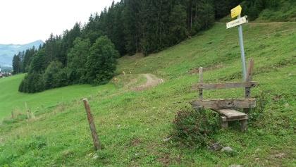 Hier links auf Lehrberg zu, wenn wir zur Kapelle hinunter wollen..