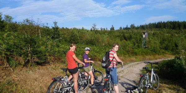 E-Bike-Radeltour rund um Bad Peterstal-Griesbach