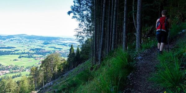 Ausblick vom Anstieg zum Falkenstein