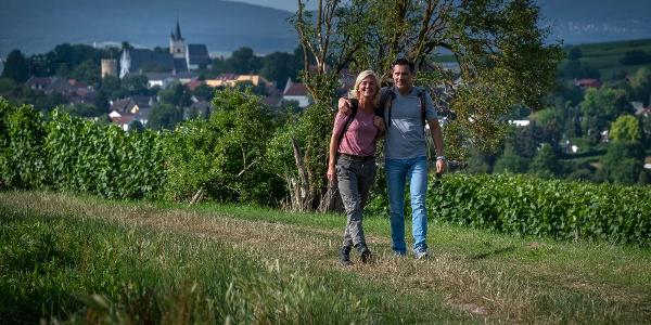 Wanderweg auf dem Mainzer Berg