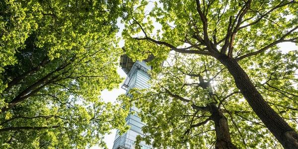 Balduin-Turm