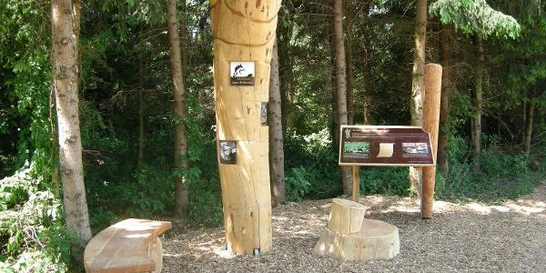 "Auffällige überdimensionale ""Krenwurz'n"" aus Holz"