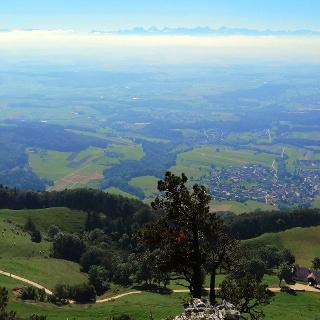 Blick auf Oberaargau und die Alpen.