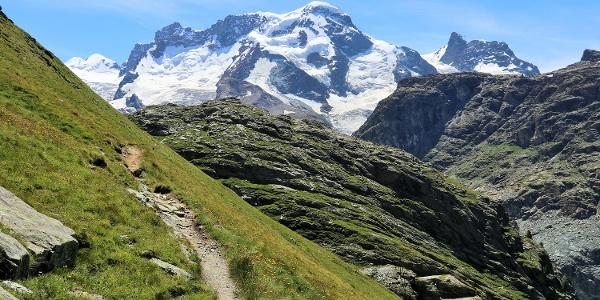 Breithorn und Klein Matterhorn vom Gagenhaupt aus gesehen