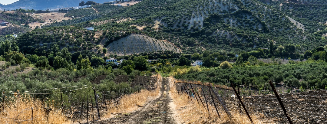 Looking Backwards towards Zahara de la Sierra