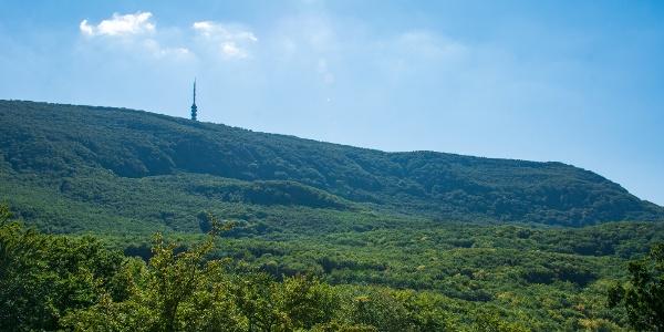 A kékesi kilátó a Szállás-hegyről nézve