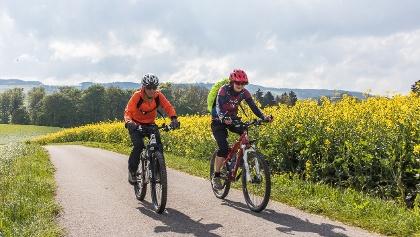 An Rapsfeldern vorbei bei Gunzwil