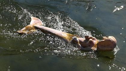 Meerjungfrau in der Amper