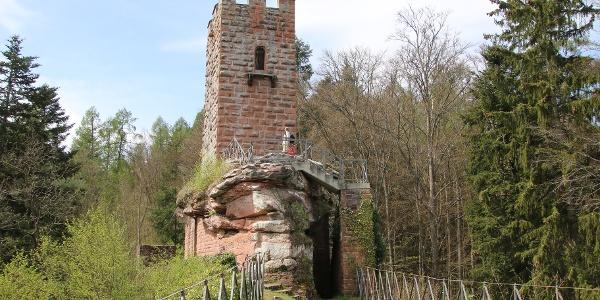 Blick auf Burg Erfenstein