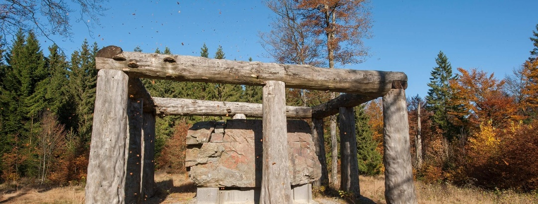 Stein Zeit Mensch WaldSkulpturenWeg