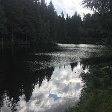 Beim Meiler in Schöneck