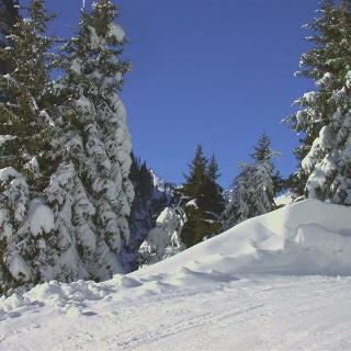 Winterwanderung Paznauner Thaya