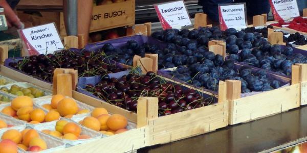 Hildesheim: Markt