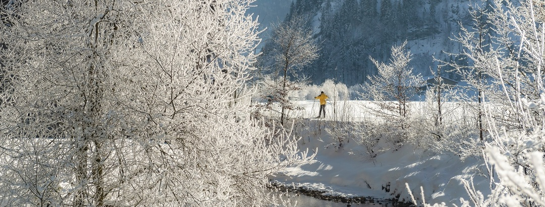 Idyllische Winterlandschaft in Studen SZ.