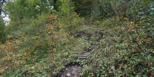 Erstes Steilstück mit Stufen