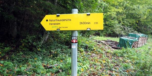 760m, links von der Forststraße ab