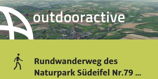 Interaktives 3D Erlebnis: Rundwanderweg des Naturpark Südeifel Nr.79 Start/Ziel Rittersdorf