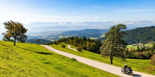 Auffahrt zum Magdalensberg
