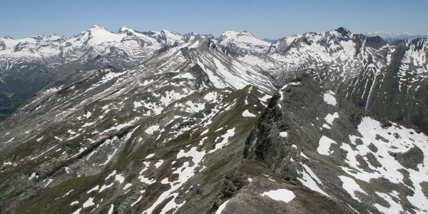 Gipfel Faltschonhorn