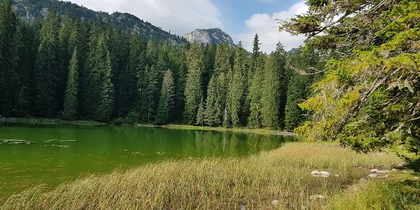 Der Zminje jezero (Schlangensee)