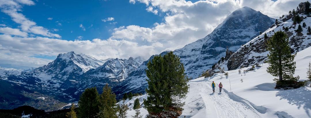 Winterwanderung Männlichen - Kleinen Scheidegg