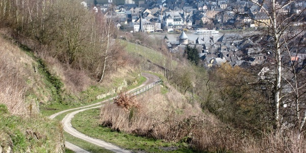Traben-Trarbach, Wanderweg