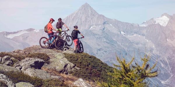 Mountain bikers in the Grächen region