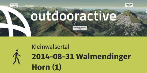 Wanderung im Kleinwalsertal: 2014-08-31 Walmendinger Horn (1)