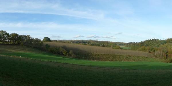 Ausblick auf die Feld/Wiesen-Landschaft