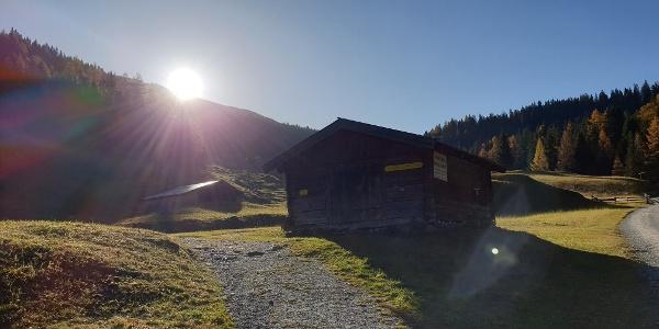 Start über schöne Almwiesen Richtung Obernberger See