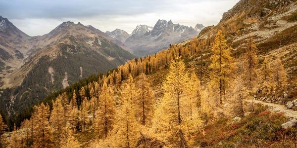 Wanderung Alp Gues