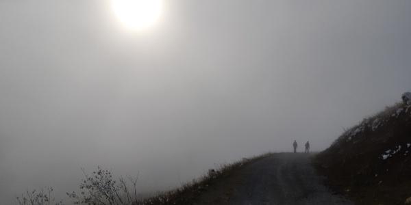 Nebel und Sonnenimpressionen beim Niederalpl