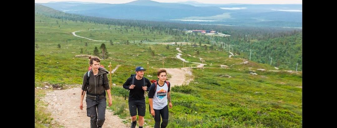 Midnight sun hike to Taivaskero, the highest top of Pallas-Yllästunturi National Park
