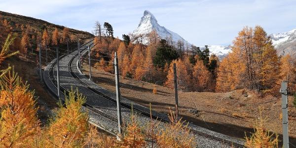 Les voies du Gornergrat Bahn sur l'alpage de Riffel