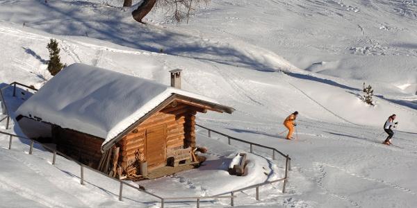 Pampeago-Predazzo-Obereggen, 48 km Pisten im Ski Center Latemar