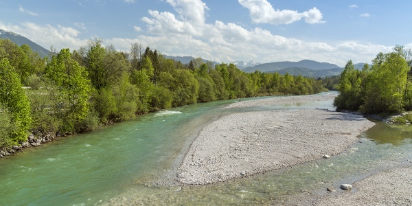 'Wildfluss Isar