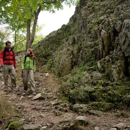 Pfälzer Höhenweg am Donnersberg