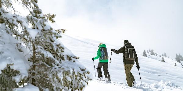 Mit Schneeschuhen durchs Winterwunderland